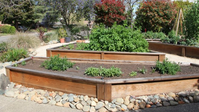 front-veg-beds-in-march-2015