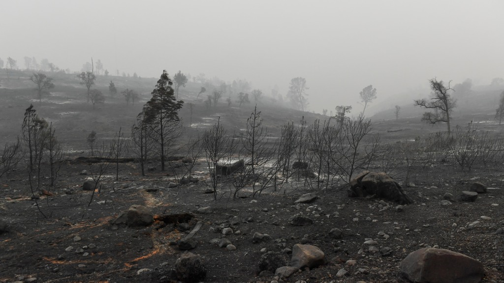 Scene of destruction after the Camp Fire in Paradise, California.