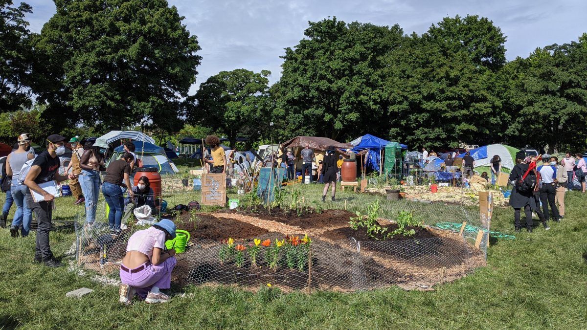 A photo shows people tending to a garden in Seattle's autonomous zone.
