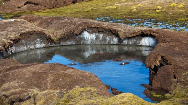 Thawing permafrost soil
