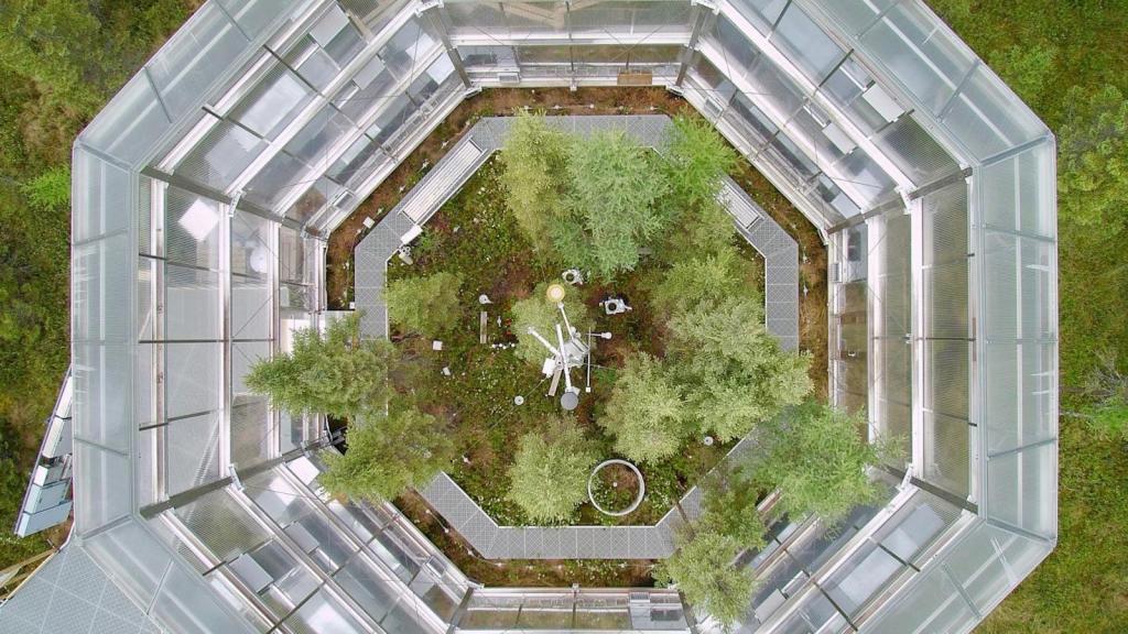 A glass enclosure constructed over a peat bog