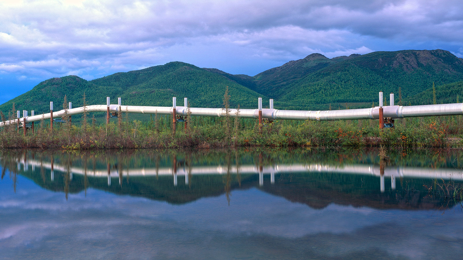 Trans-Alaska pipeline reflected in a pond
