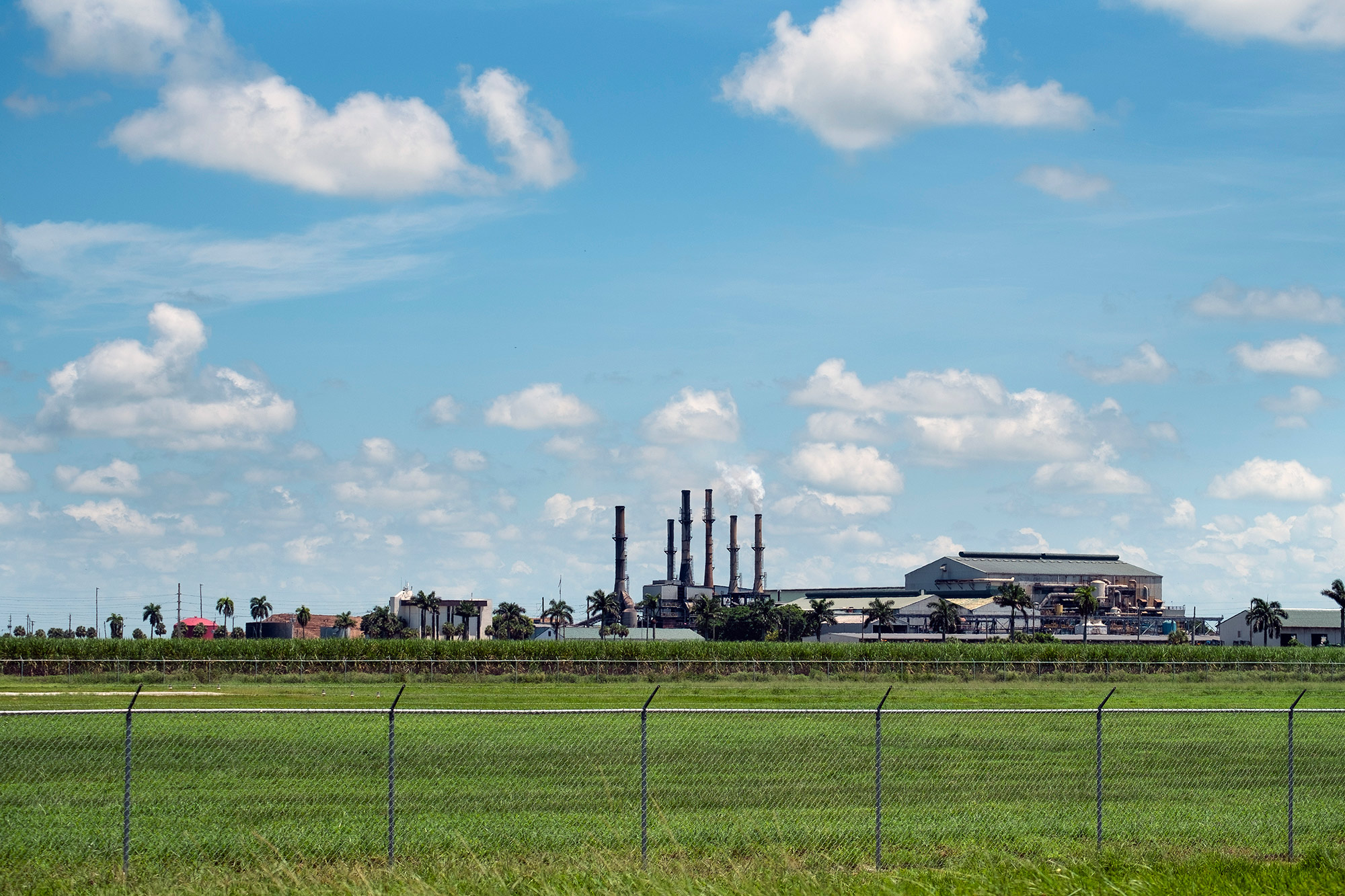 Smoke billows out of two smokestacks at the Sugar Cane Growers Cooperative of Florida sugar-processing facility in Belle Glade.