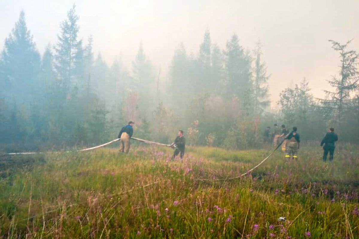 Arctic forest fire