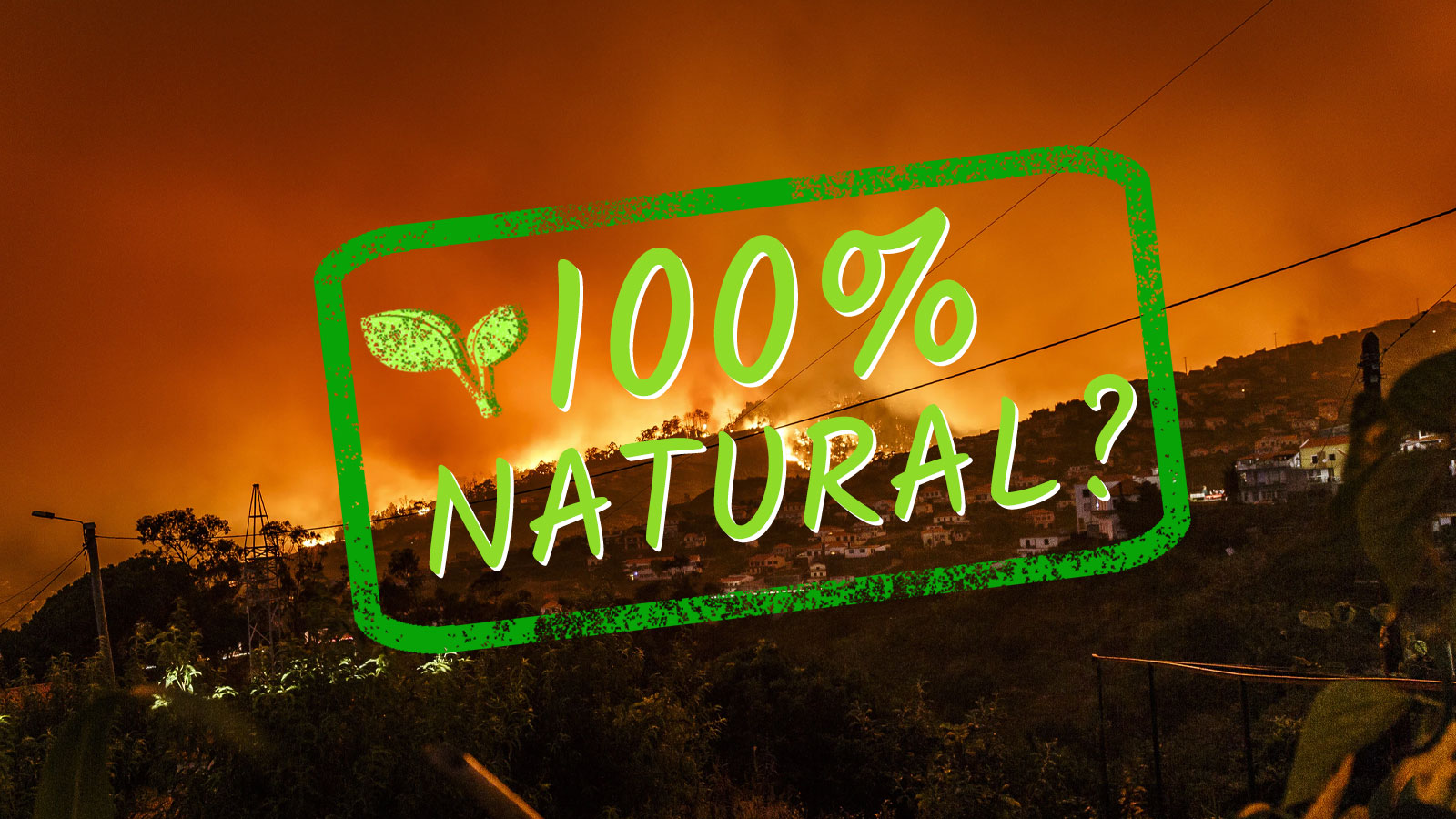 photo of The phrase 'natural disaster' is going up in flames image