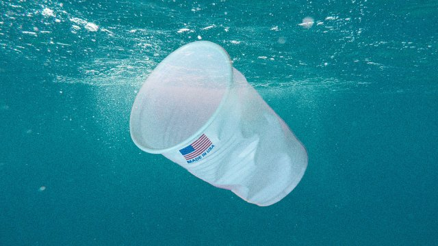 "A plastic cup with ""Made in USA"" printed on it floating in the ocean"