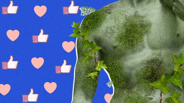 collage of moss covered statue tiktok
