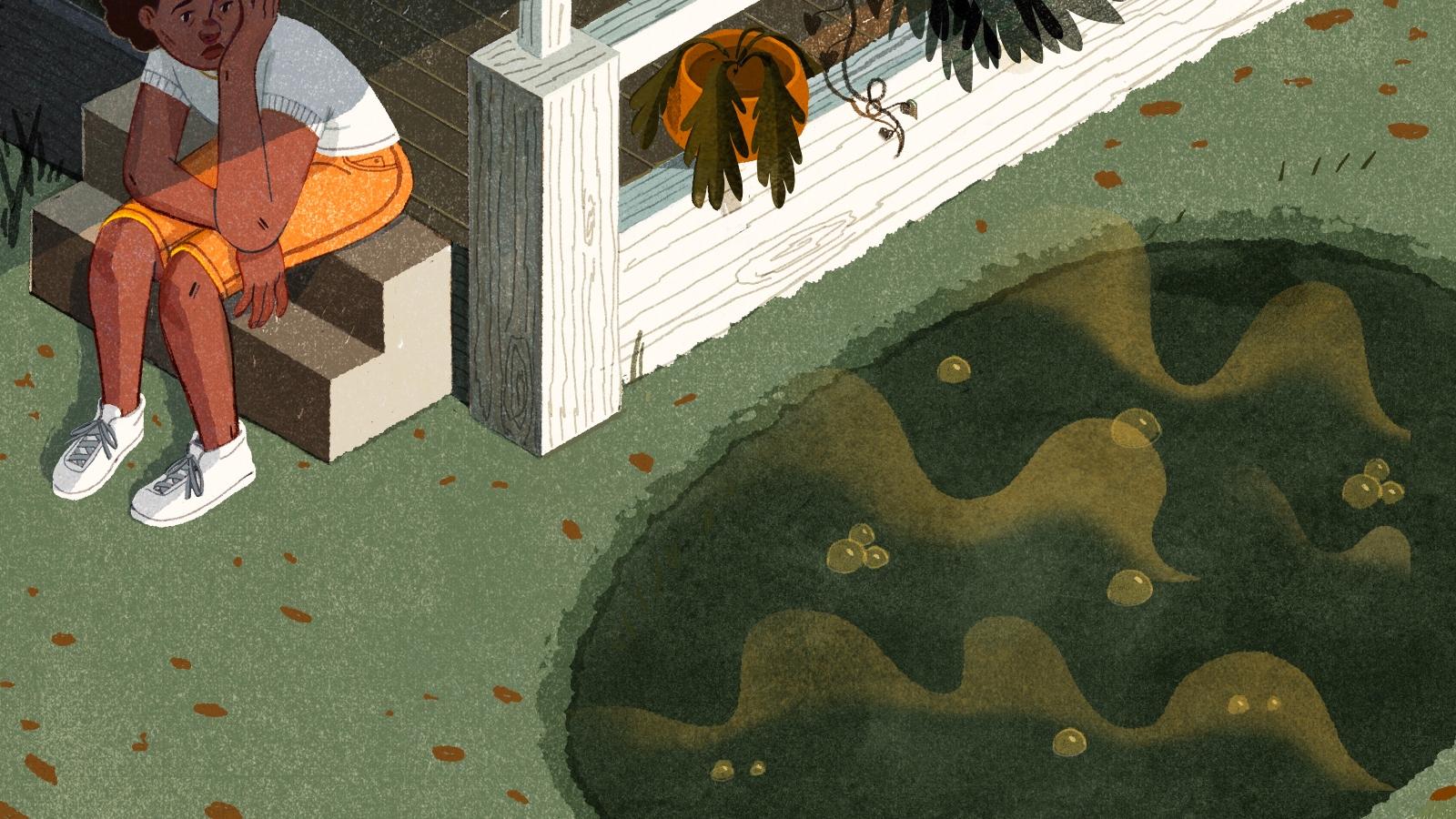sewage in yard