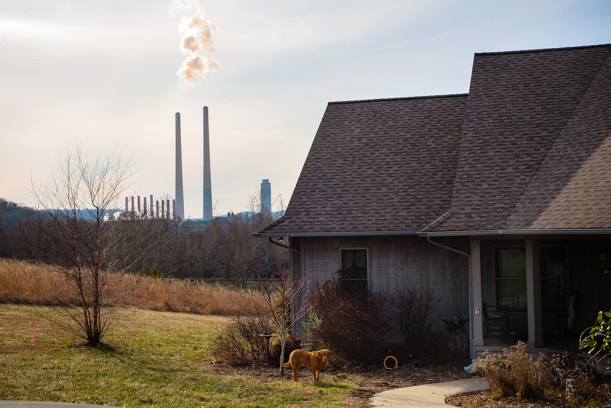 a photo of a house with a dog outside and the TVA plant in the distance
