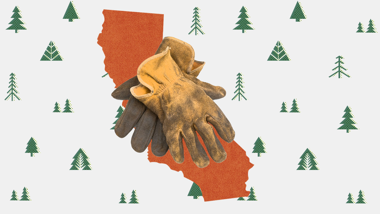 A photo collage of the silhouette of California with a pair of worn work gloves on top, and a background of illustrated conifer trees.