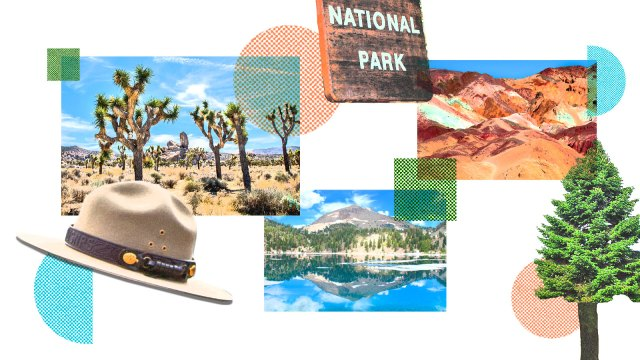 A photo collage of pictures of various national parks, with a national park sign, a ranger hat, and a fir tree.