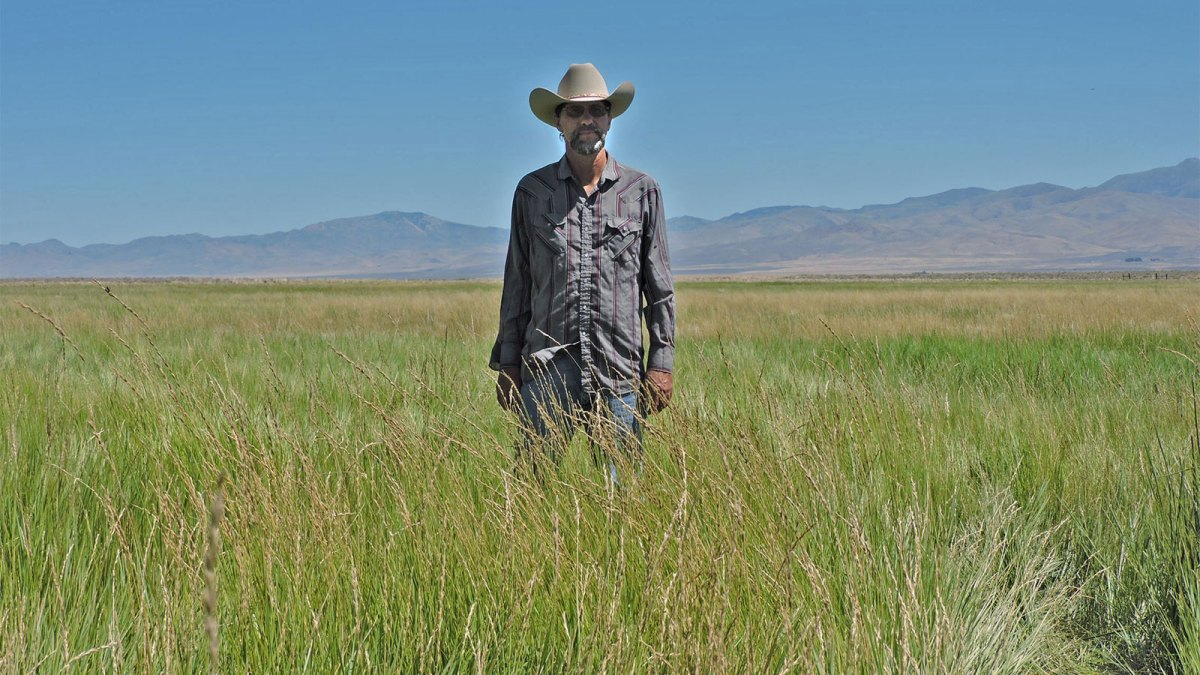Photo of Edward Bartell standing in a field of green grass against a blue sky