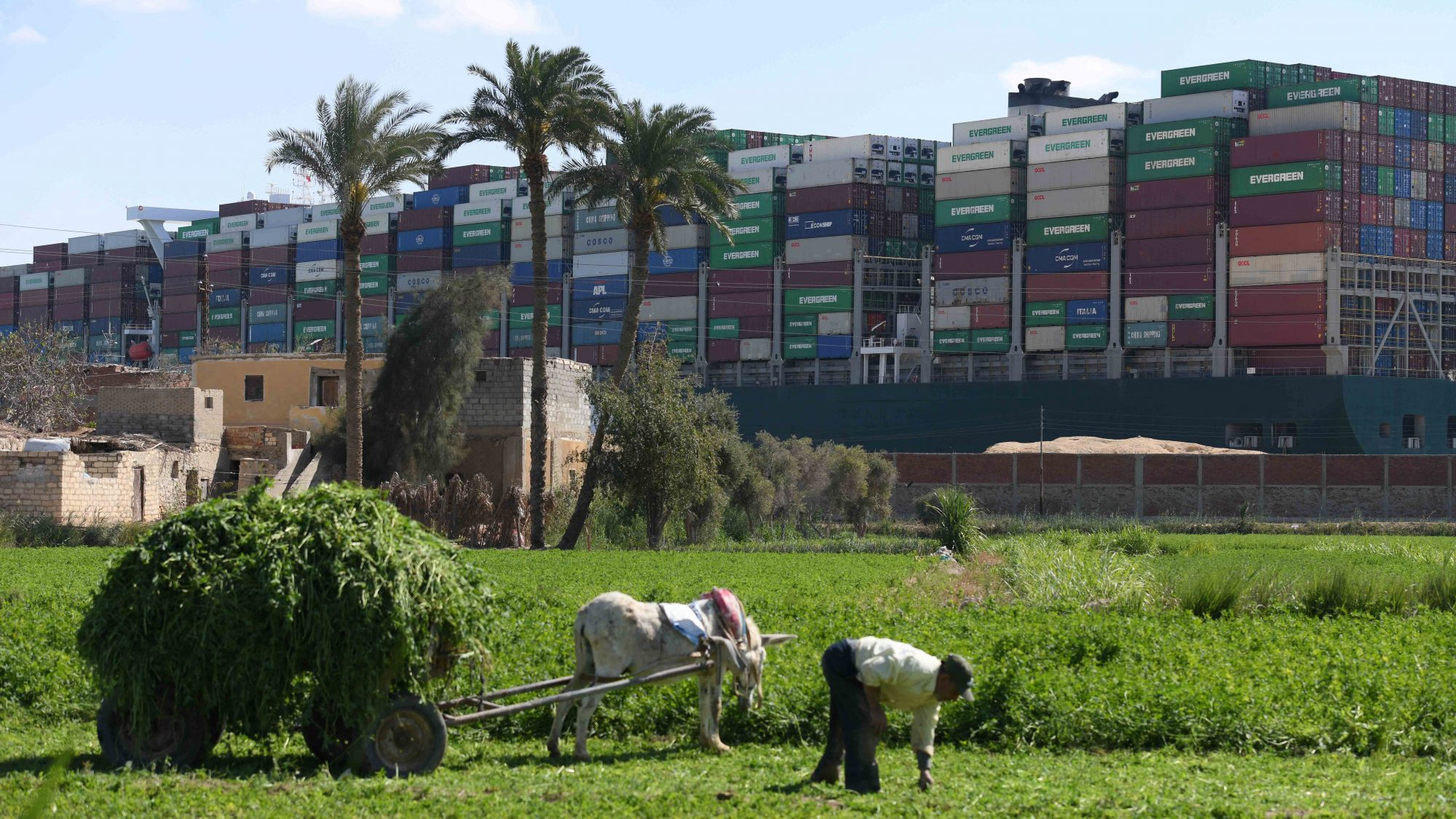 Ever Given stuck in Suez Canal