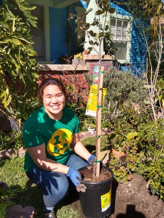 A woman in a green shirt and jeans kneels by a tree planter in front of a house, surrounded by greenery.