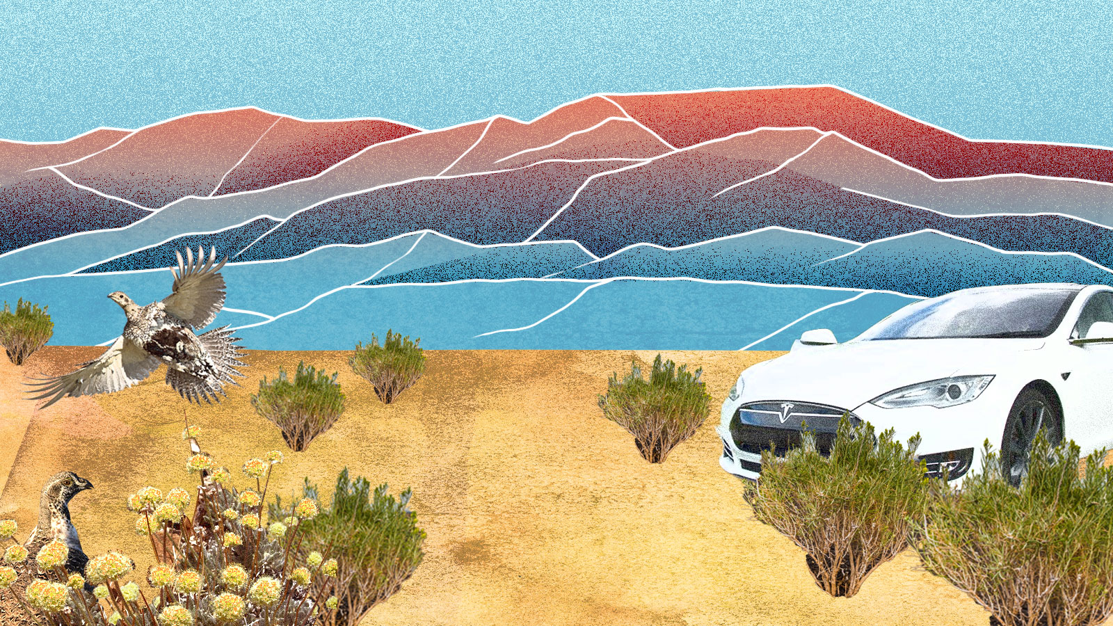An illustration of Nevada's Thacker pass. In the background are hand-drawn mountains in sunset colors. In the foreground, an electric car is parked among patches of buckwheat and brush. A bird is about to take flight on the left side of the image.