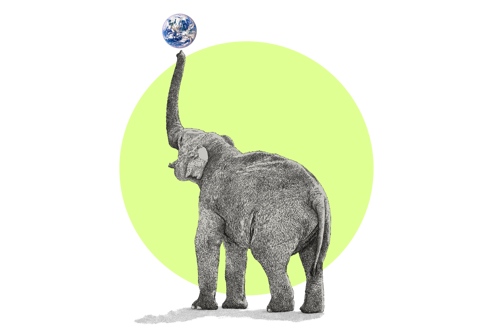 Illustration of an elephant balancing the Earth on the end of its trunk