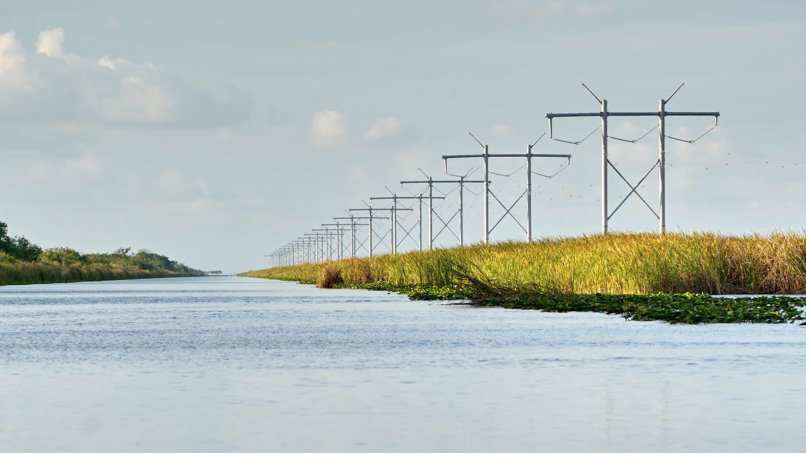 a photo of the Florida everglades with a wide expanse of blue, calm waters on the left, and a series of crisscrossing power lines on the right.