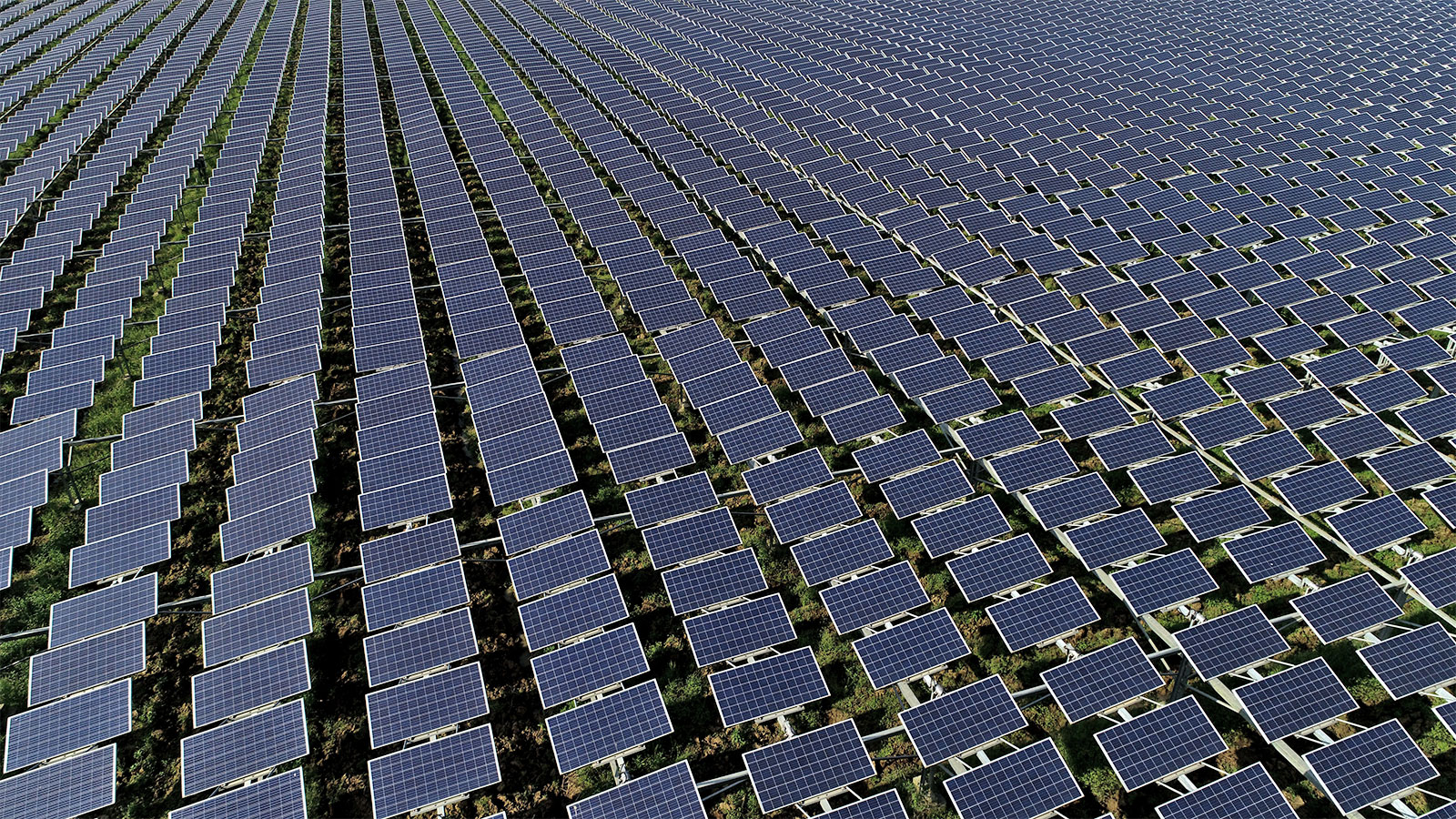 Aerial photo of solar panels