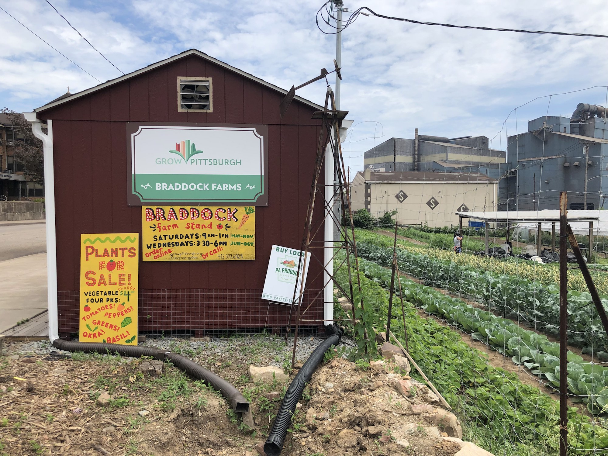 a red shed is marked with several signs including a Braddock Farms marker. To the right, there are rows of green crops growing under blue cloudy skies
