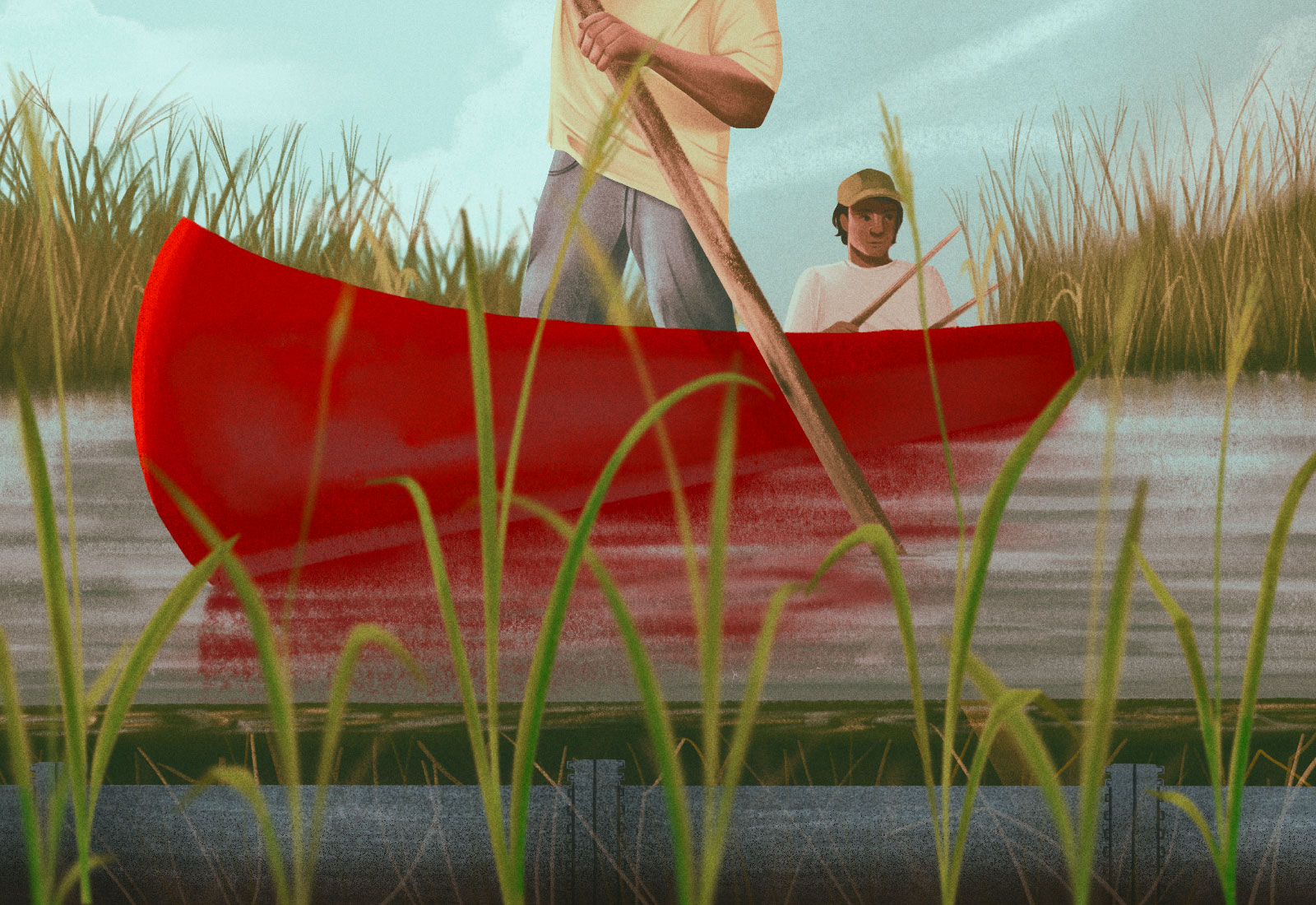 Illustration: Two First Nations men in a red canoe harvesting wild rice, with a pipeline under the water
