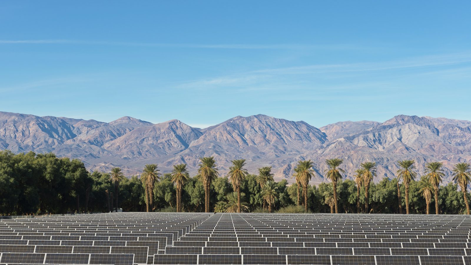 solar panels in front of palm trees and mountains