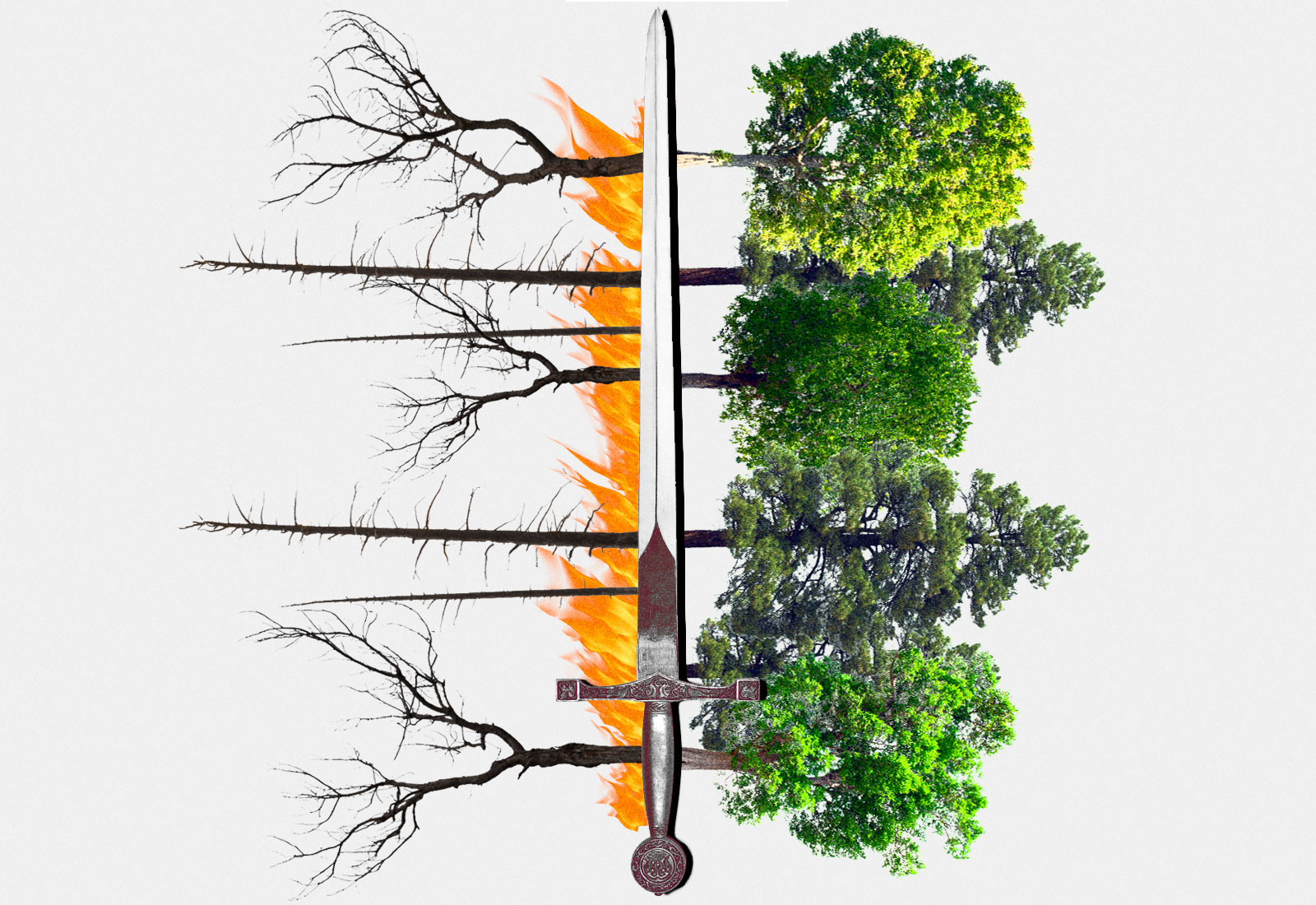 Collage: A sword with burnt trees and fire on the left and green trees on the right