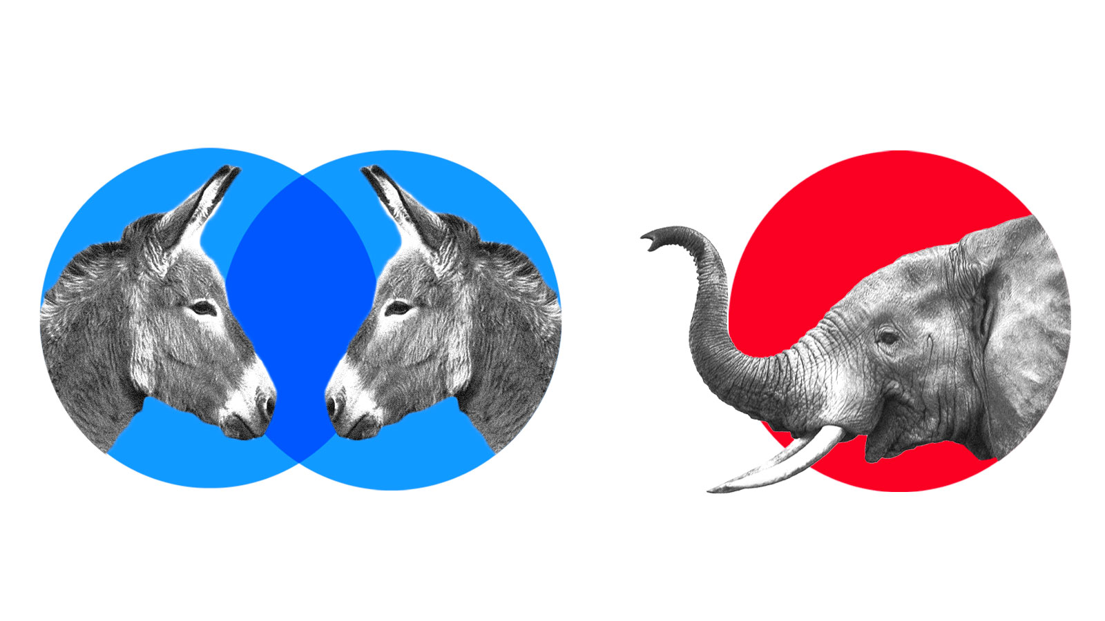 Collage: Two donkeys in two blue intersecting circles and an elephant in one red circle