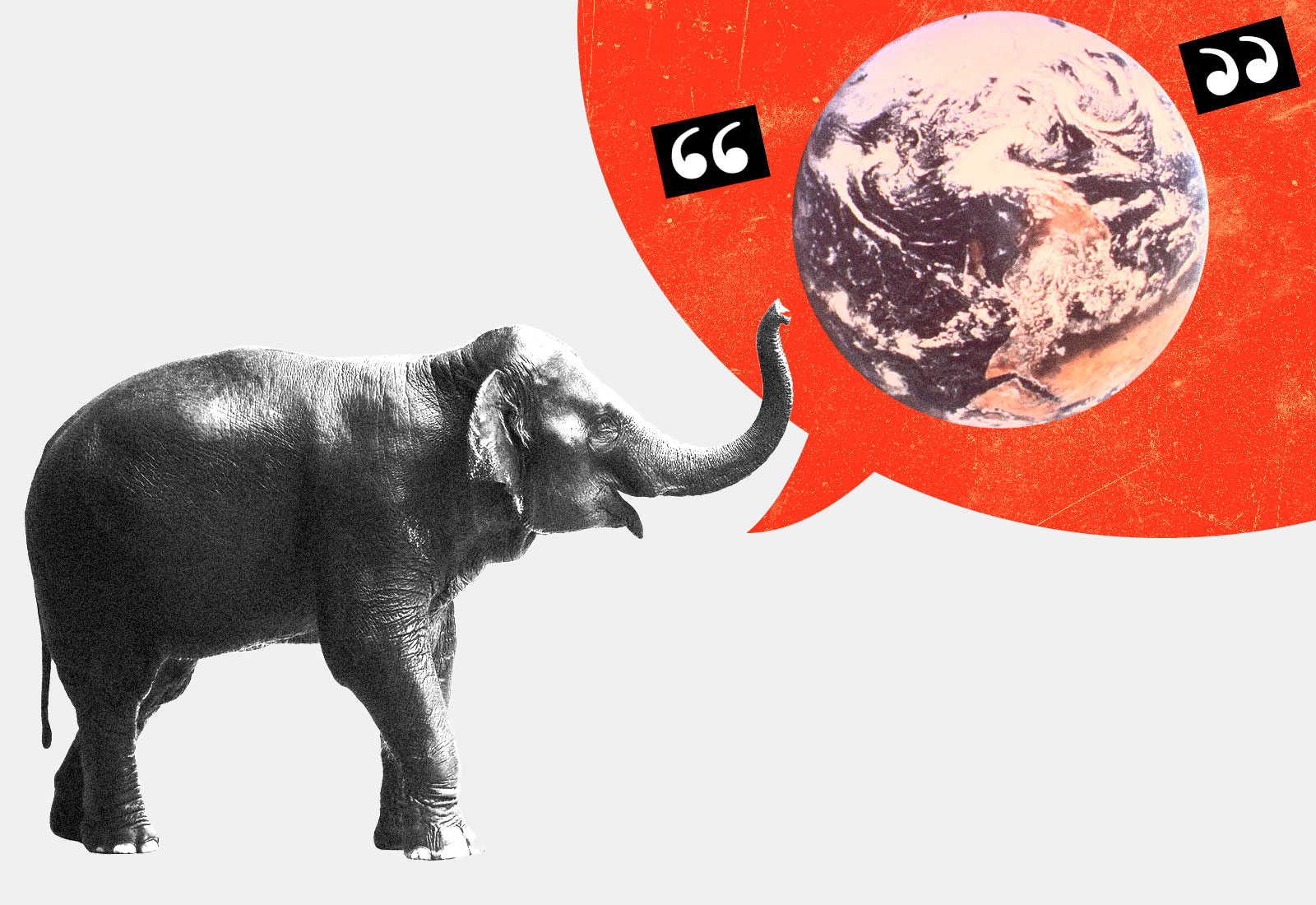 Collage: An elephant with a large red speech bubble with an Earth in quotes