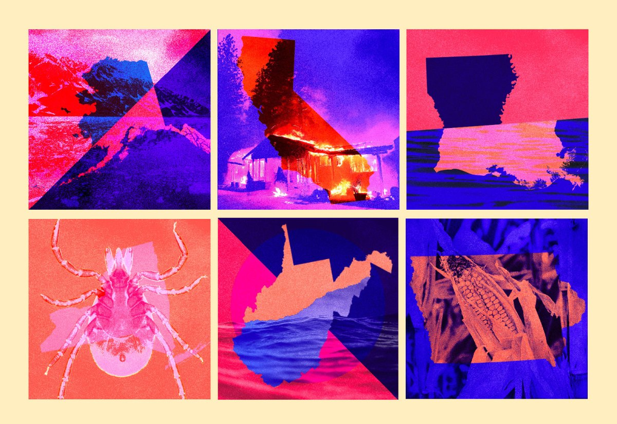 Collage: multiple states with photos depicting climate change issues