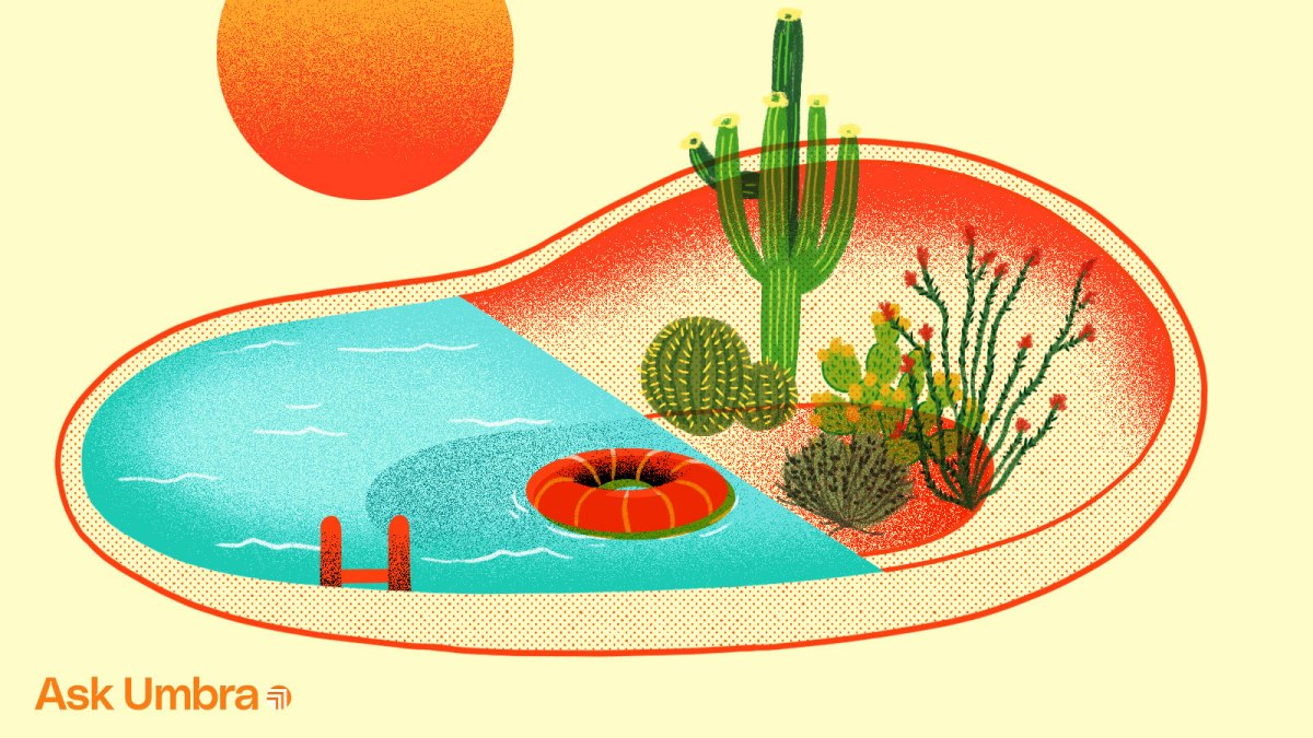 Illustration: A pool with one half filled with water and the other half filled with desert plants