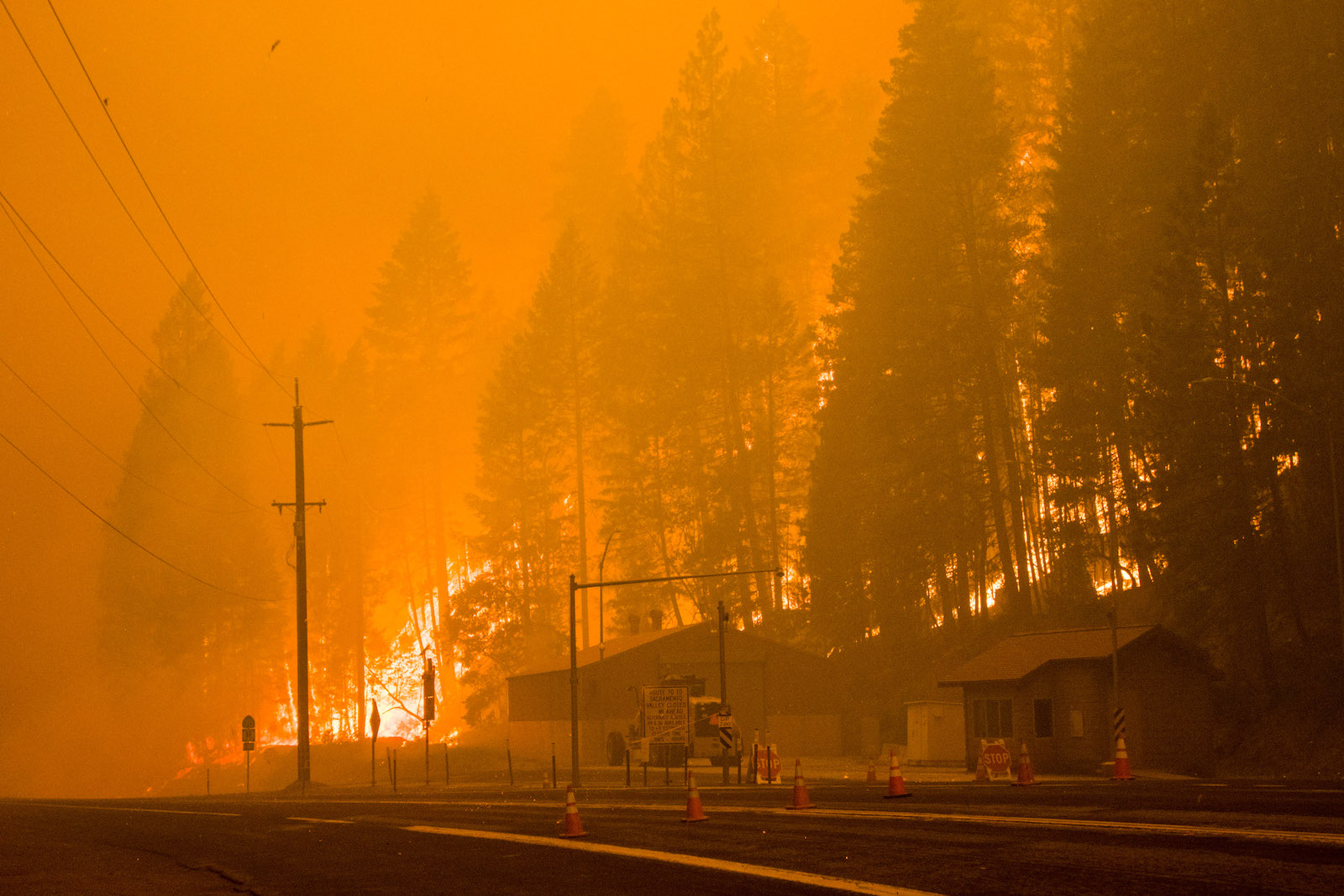 A highway with traffic cones and house-like buildings on the side of the road. Large wildfire flames engulf nearby trees. The whole scene is a burnt orange color due to smoke.