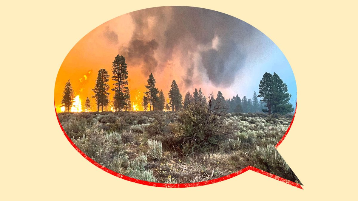 Collage: photo of a wildfire inside of a speech bubble
