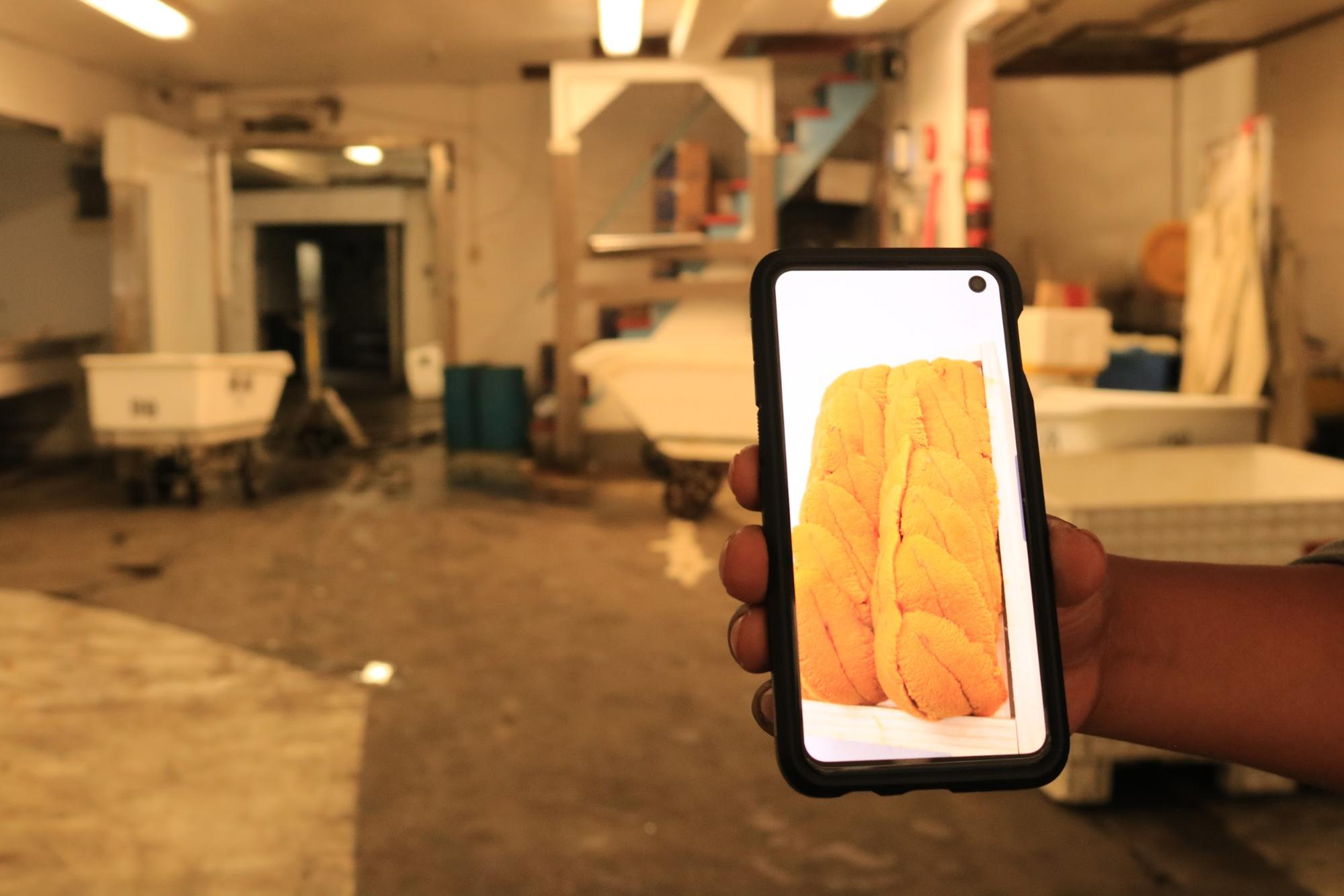 A man's hand holds up a smartphone on which an orange squishy tubular piece of sushi is displayed. In the background, a room with large plastic tubs and fluorescent lighting