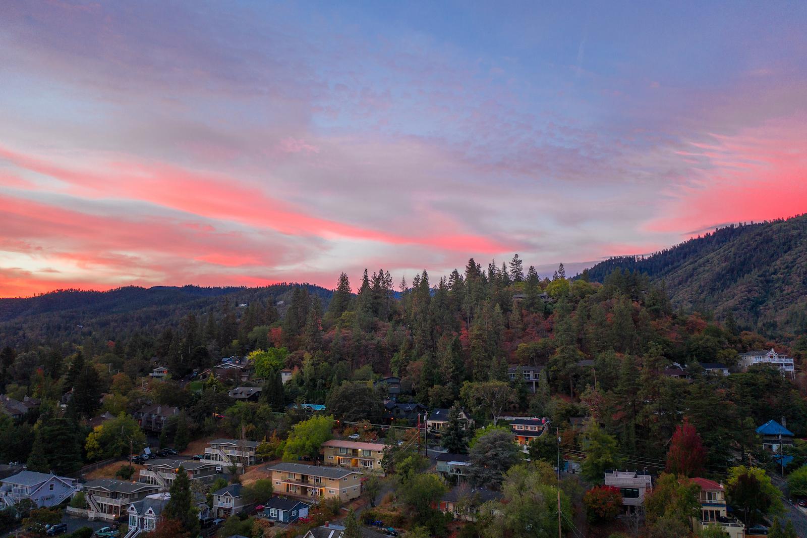 a sunset view of a town amidst tall fir trees
