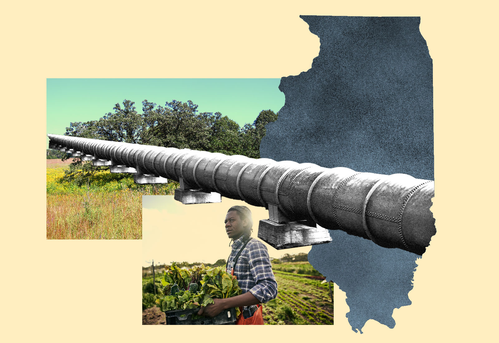 Collage: silhouette of Illinois, an oak savanna, and a Black farmer covered by an oil pipeline
