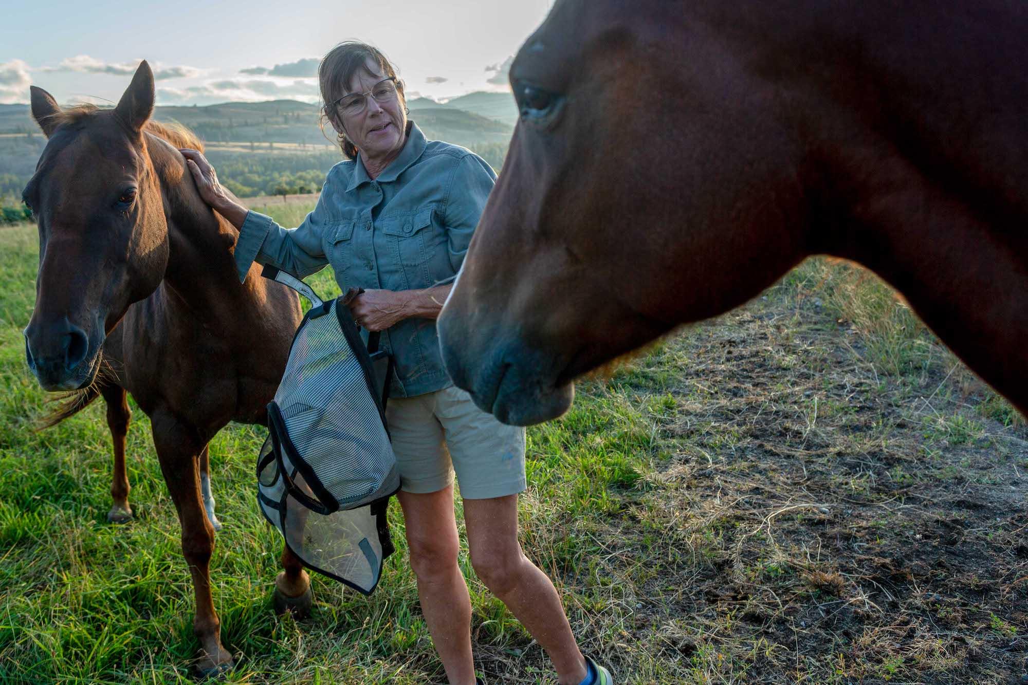 Une femme vêtue d'une chemise vert d'eau et d'un short kaki caresse un cheval.
