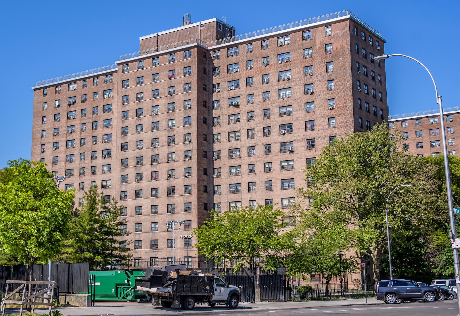 Brooklyn public housing