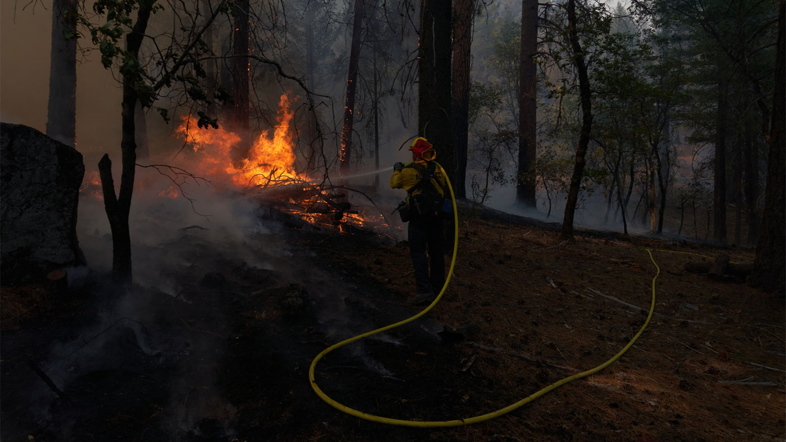 A firefighter spraying water on flames in a forest