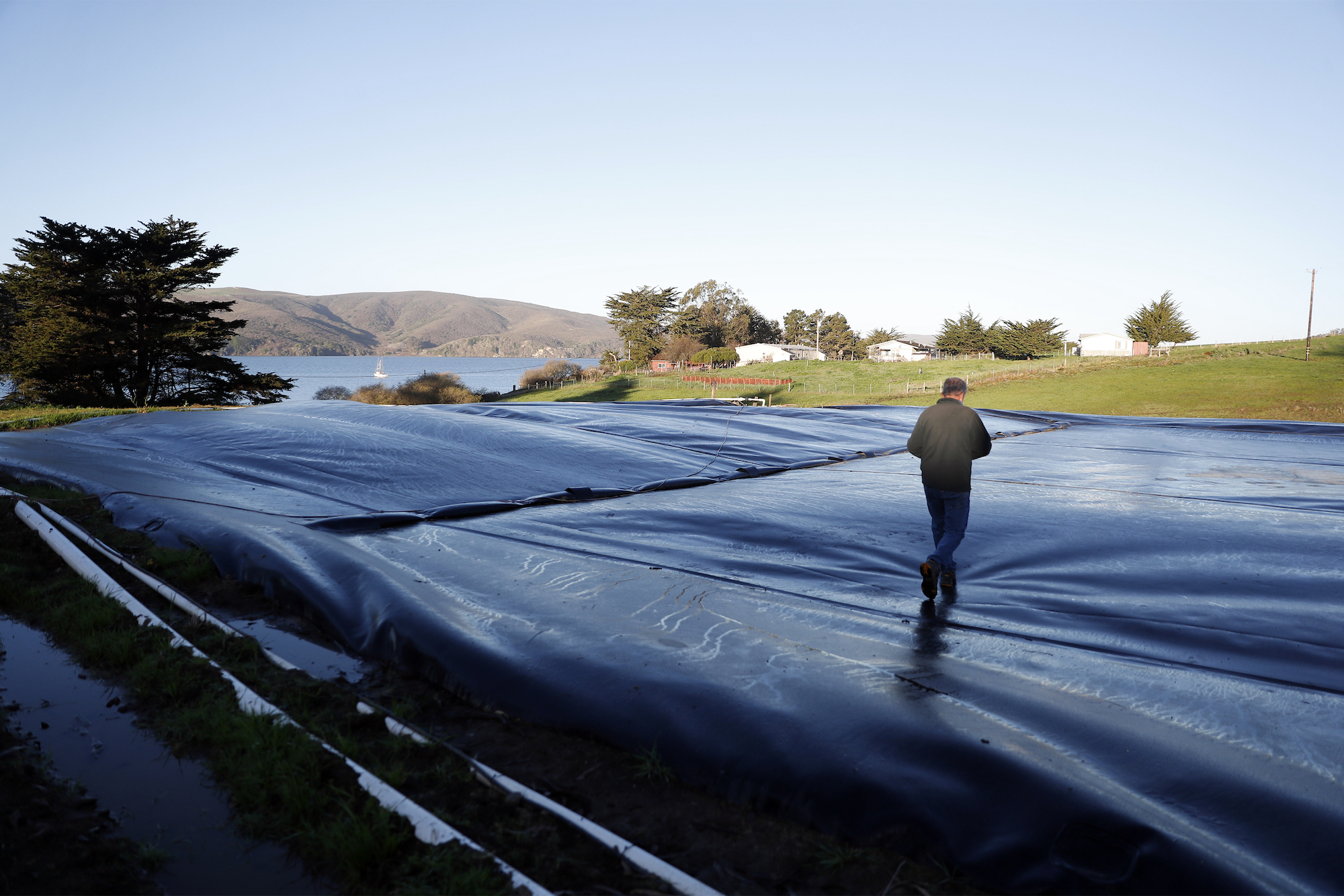 A man dressed with black plants and a black jacket walks over a giant black plastic bag, where methane is being stored. You can see mountains in the background, a clear, blue sky, and a couple of trees.