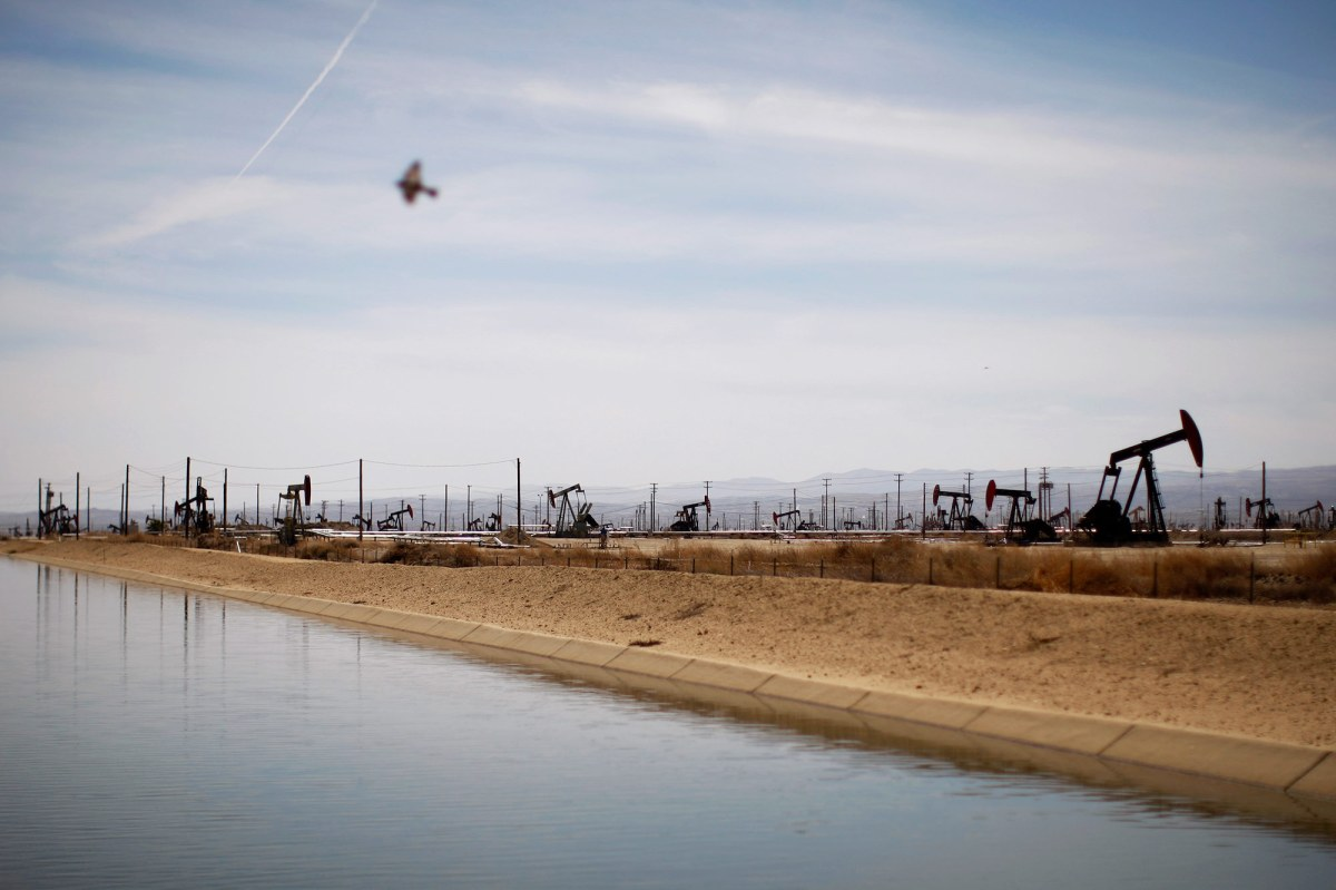 A swallows flies over a canal in an oil field over the Monterey Shale formation