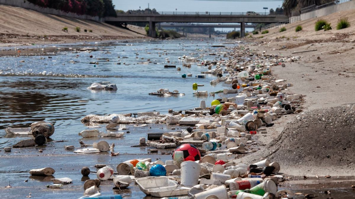 Plastic littering a creek.